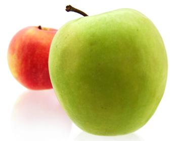 Какие яблоки брать на домашнее вино